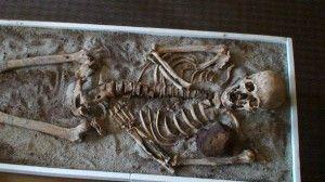 skeleton-vampire